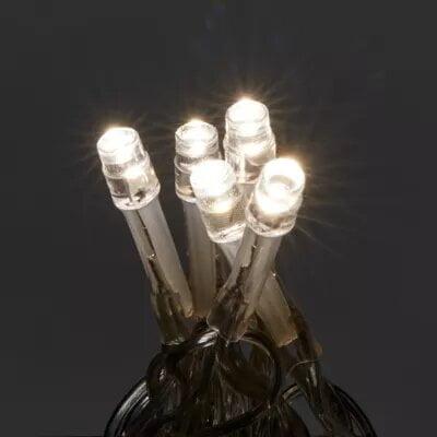 Instalatie 240 LED-uri, cablu transparent, lumina rece